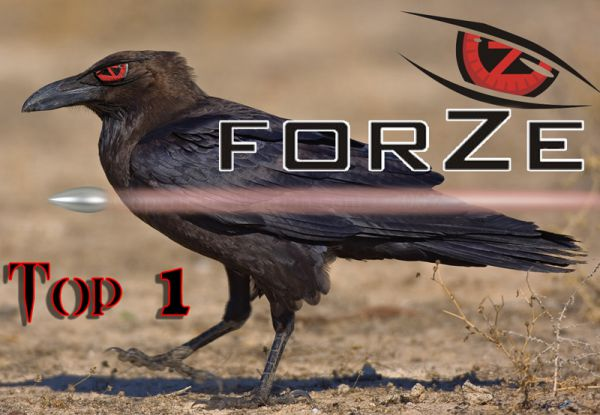ForZe top1